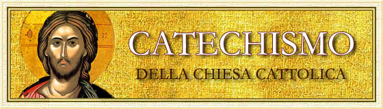 0catech
