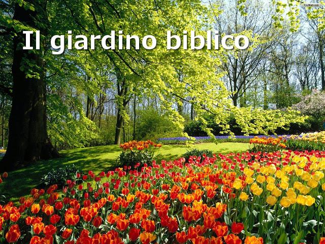 Estremamente Il giardino delle piante e degli alberi biblici | Parrocchia di  HK19